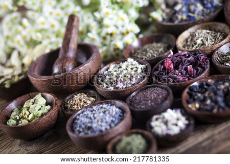 The ancient Chinese medicine, herbs and infusions - stock photo