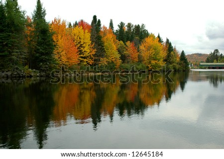 The Androscogin river during the fall season