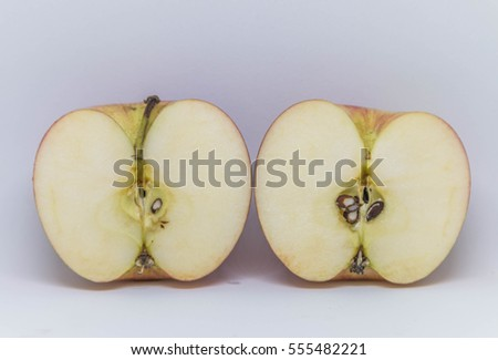 The apple tree is a deciduous tree in the Rosaceae. A sweet apple cider that has grown around the world in the form of fruit.