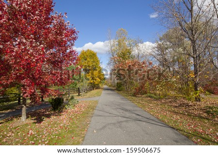 The Ashuwillticook Rail Trail in the Berkshires, of Western Massachusetts