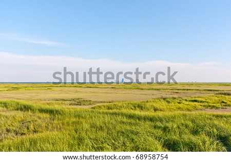 The Atlantic City, New Jersey skyline. The foreground is a marsh with green grass (Forsythe Nature Reserve). - stock photo