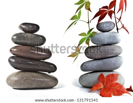 The autumn composition. - stock photo