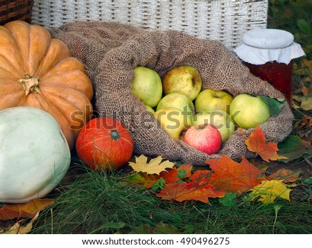 The autumn harvest from the garden on a glade with autumn leaves. Shopping, pumpkins and squash, jam in a jar, wicker basket