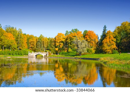the autumn landscape with yellow trees and small pond