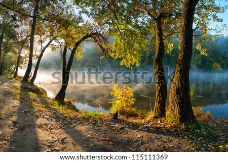The autumn wood on the river bank, shined with the sun, fog over water, outdoors - stock photo