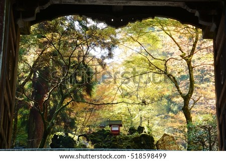 "autumn_tints"" Stock Photos, Royalty-Free Images & Vectors ..."