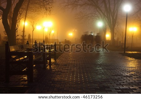 The avenue of city park is shown at night in a fog - stock photo