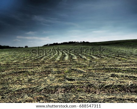 The background from the growing green grass on the plowed field but also from the sky and the clouds almost to the horizon. The complex mixed image for the decoration of a modern smart home.