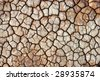 the background with the dry ground. - stock photo
