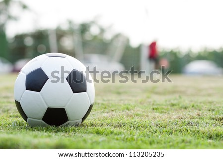 The ball in grass. The sideline. Fresh green grass. Black and white ball. - stock photo