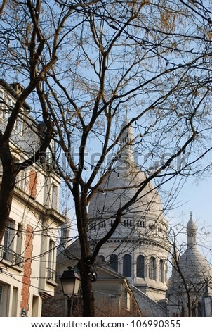 The Basilica of Sacre Coeur behind the trees, Montmartre, Paris, France