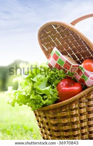 the basket full of fresh vegetables on the grass - stock photo