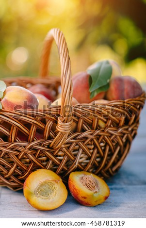 The basket of ripe, juicy peaches placed on the table - stock photo