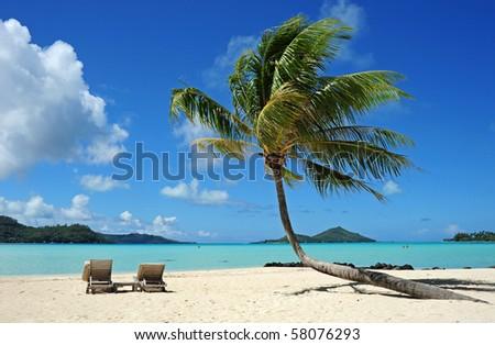 the beach at bora bora - stock photo