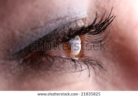 the beautiful eye of the brunette - stock photo