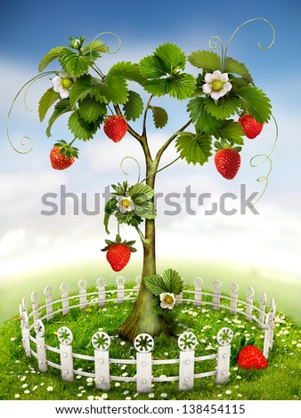 strawberry tree stock images, royaltyfree images  vectors, Beautiful flower