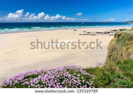 The beautiful golden sandy beach at Gwithian with Godrevy in the distance Cornwall England UK Europe