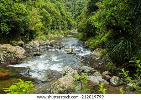 The beautiful Kahuterawa stream flowing through some of New Zealand best native bush. - stock photo