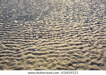 The beautiful lines of sand