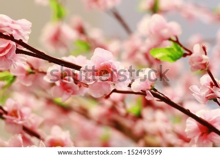 The beautiful pink artificial cherry blossoms.  - stock photo