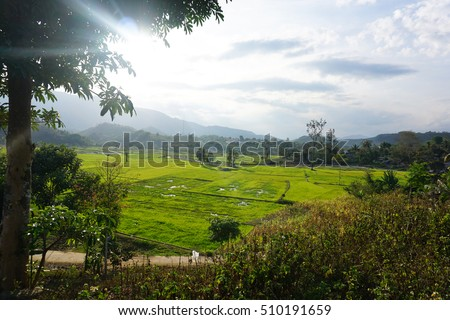 The beautiful rice fields and mountains, waterfall in Cam Ranh, Nha Trang, Khanh Hoa province, in central of Vietnam. An amazing destination, beautiful sightseeing, landscape for travelers