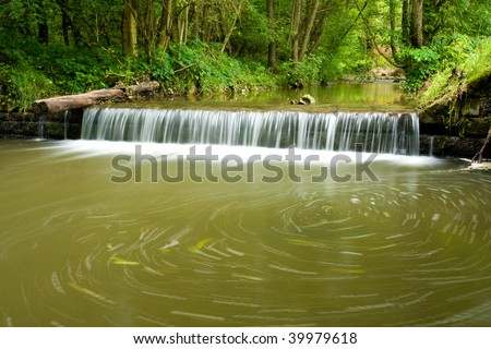 The beautiful running water in forest in summer