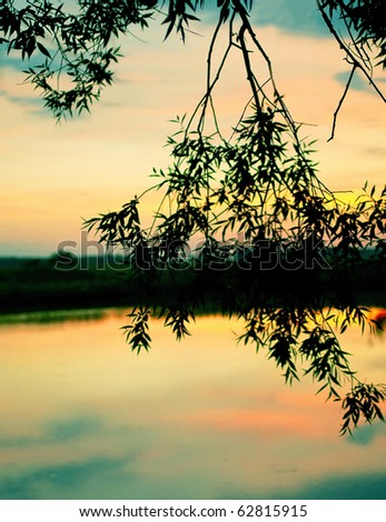 The beautiful sunset on the lake. Shallow DOF - stock photo