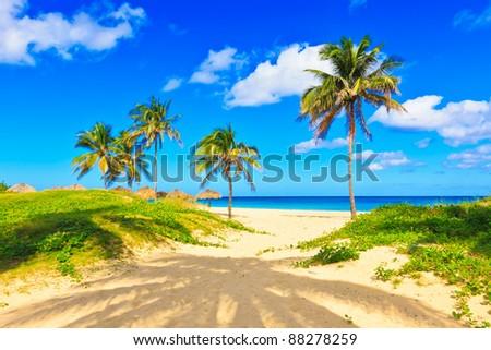 The beautiful tropical beach of Varadero in Cuba - stock photo