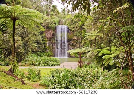 The beautiful tropical Millaa Millaa falls in Queensland, Australia - stock photo