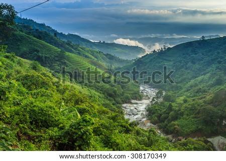 The beautiful valley in Vietnam. - stock photo