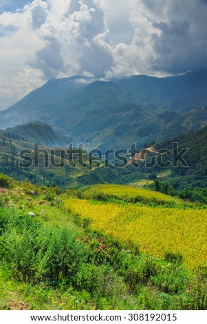 The beautiful valley in Vietnam.