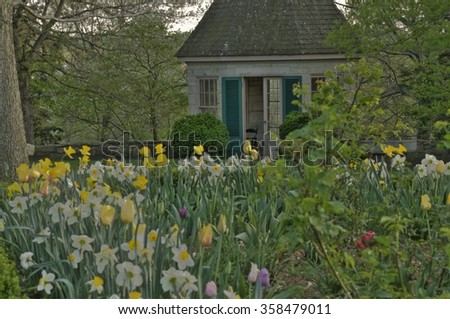 The beauty of a spring garden in full bloom