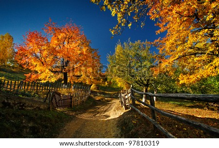 The beauty of autumn season - stock photo