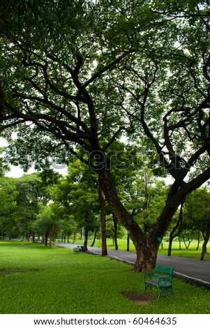 the bench under big tree on grass in park - stock photo