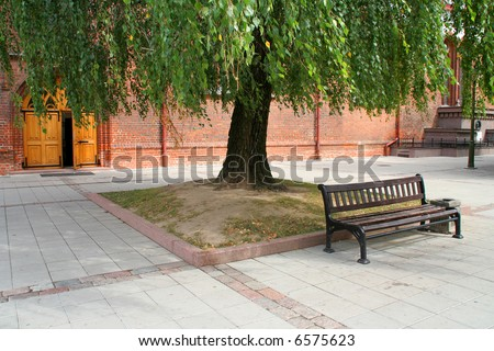 The bench under the tree near the church
