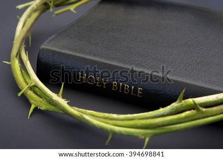 The Bible and a crown of thorns - stock photo