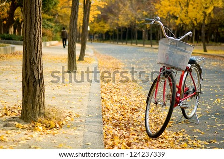 The bicycle on path of park - stock photo