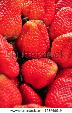 The Big Freshly harvested strawberries at market in Thailand