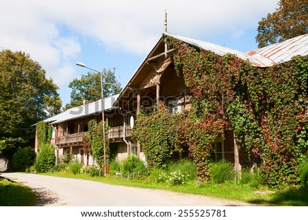 The big rural house twined grapes - stock photo