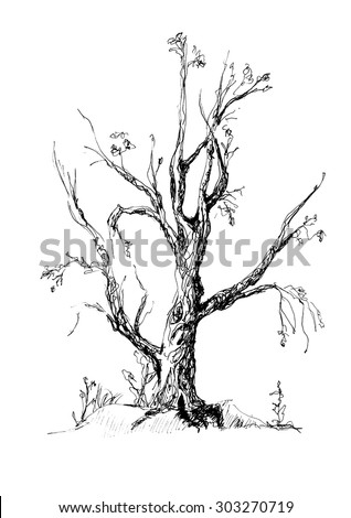 The big tree without leaves, hand-drawing gel pen