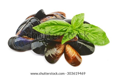 The Black Sea mussels and basil leaves isolated on white background - stock photo
