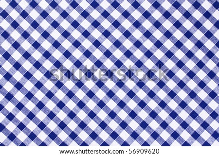 the blue checkered tablecloth - stock photo
