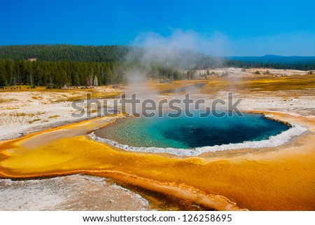 The Blue Star Pool in Yellowstone National Park,USA - stock photo
