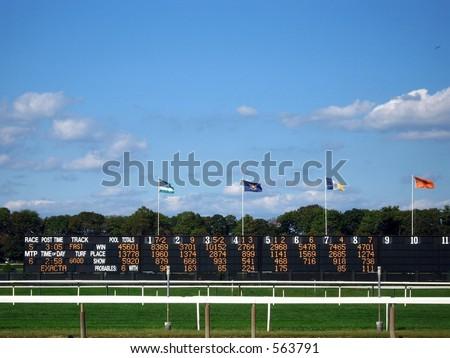 The Board - stock photo