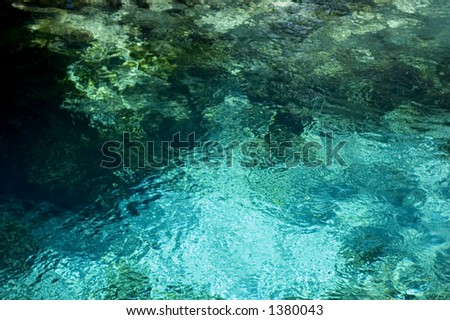 The boil at Fanning Springs, Florida. - stock photo