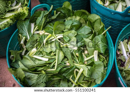 The Bok choy baskets in the agriculture cooperative.