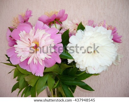 The bouquet of peonies