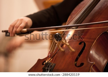 The bow on the strings cello closeup - stock photo