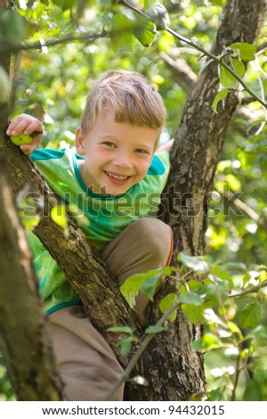 the boy climbed up a tree