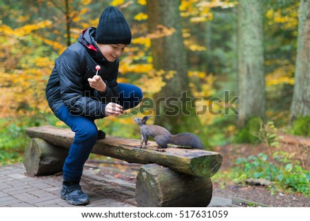 The boy feeds a squirrel with nutlets from a hand in the wood